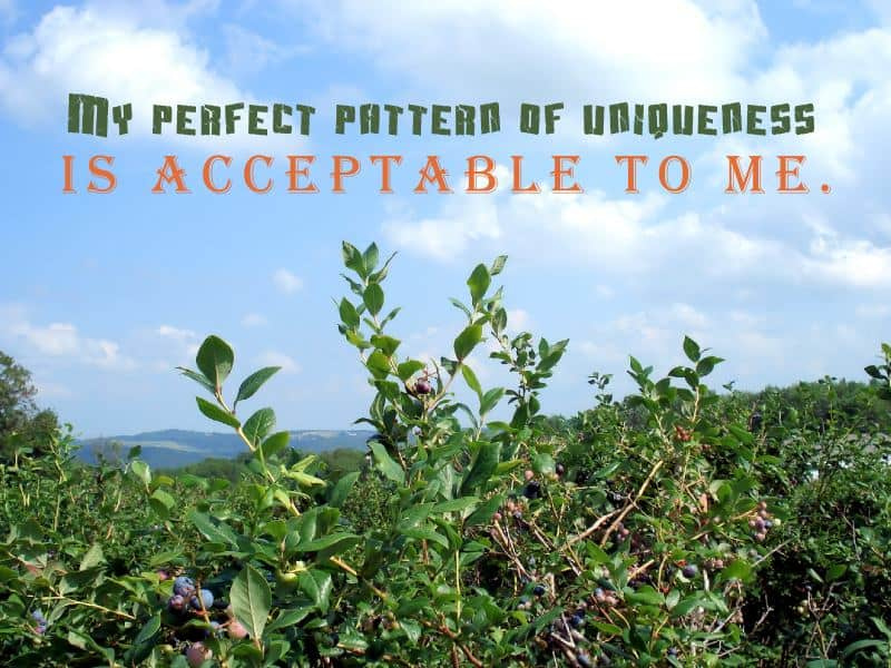 photo of trees with uniqueness quote