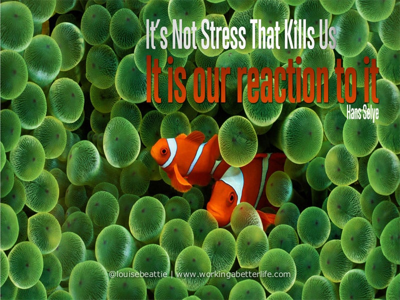 Hans Selye Stress quote